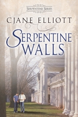 SerpentineWalls_FInal2