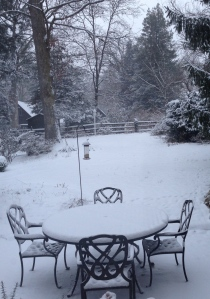 Seven hours later, the squirrel was gone, but we finally had snow.