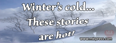 StormingLove_blizzard_banner blast copy