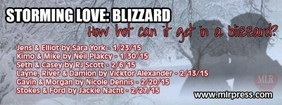 StormingLove_blizzard_banner blast